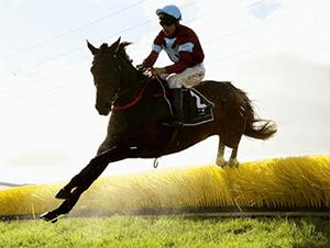 Warrnambool races