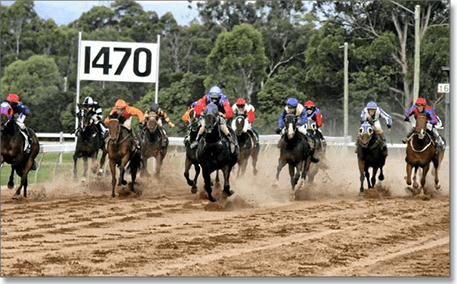 Gympie betting