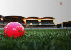 Pink ball test