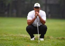 Tiger Woods 2017