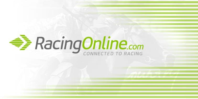 5Dimes online sportsbook - Sport & racing betting site