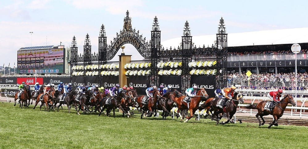 Melbourne Cup Fields & Odds