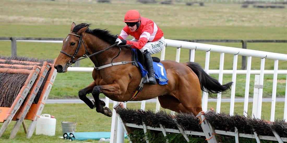Laurina horse racing news