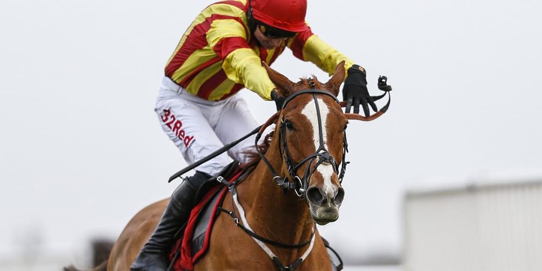Poetic Rhythm horse racing news