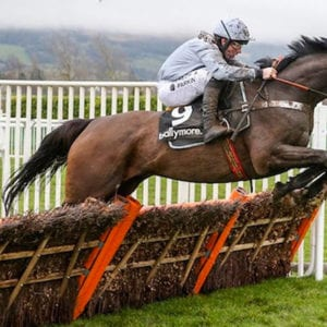 Santini horse racing news