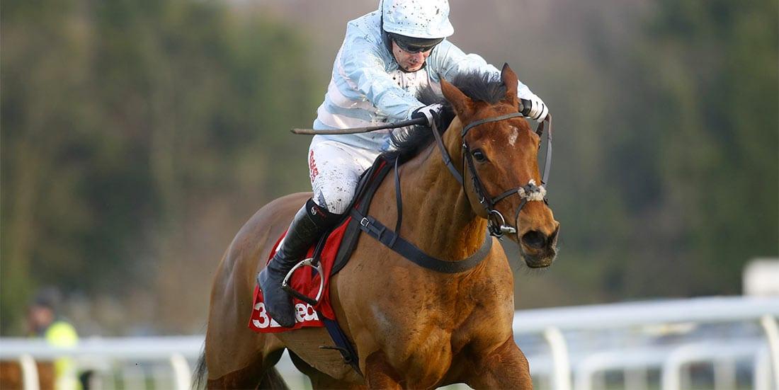 Summerville Boy horse racing news