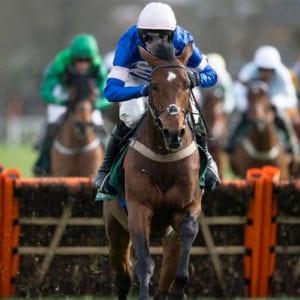 Solo horse racing news