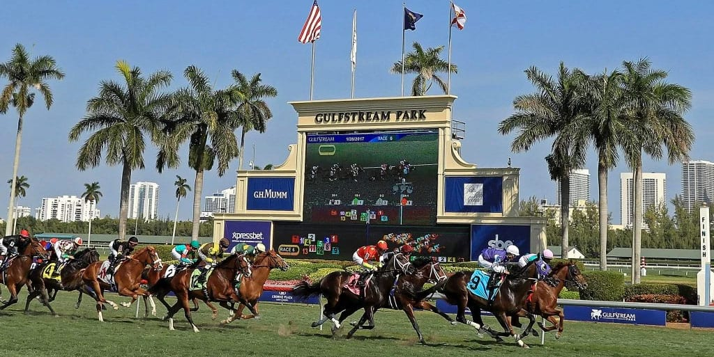Gulfstream horse racing tips