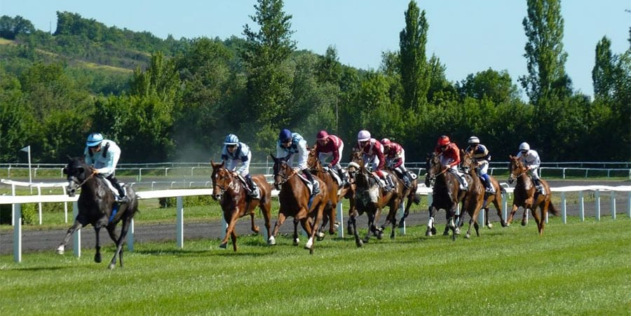 South African horse racing news