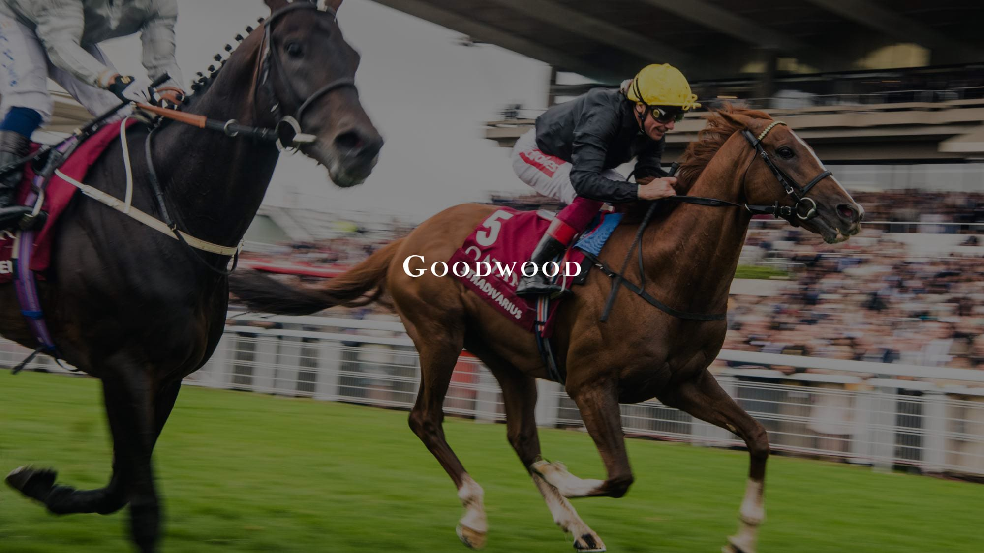 Goodwood Betting Promotions