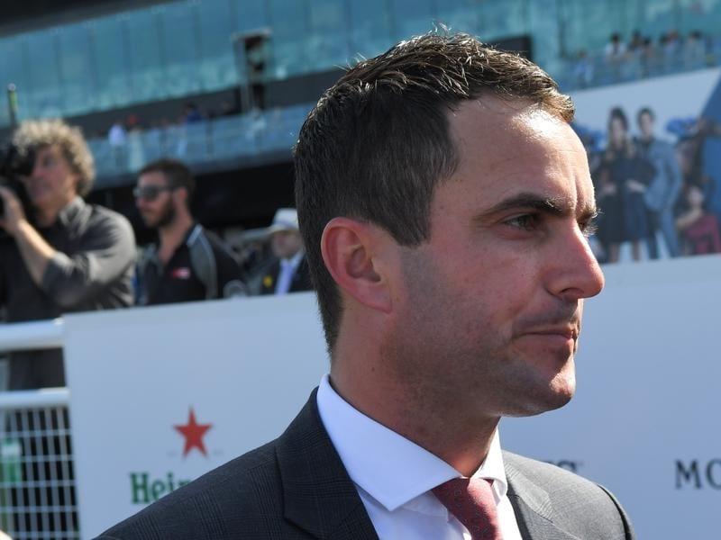 Andrew Forsman