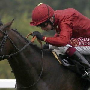 Kameko horse racing news