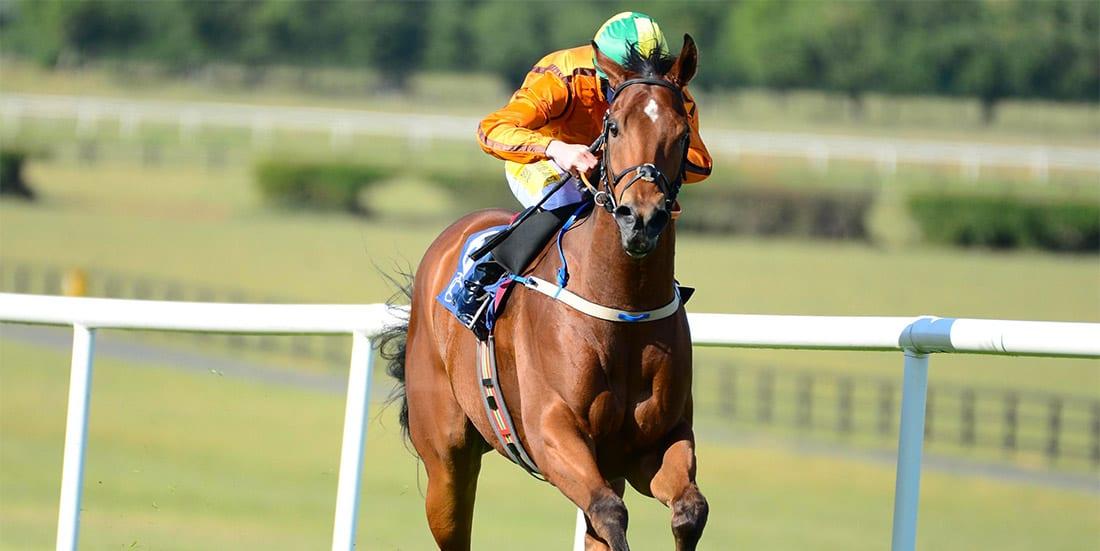 Sceptical horse racing news