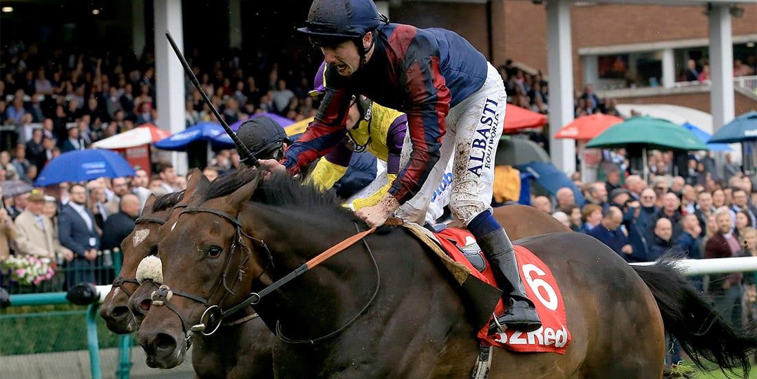 Tin Man horse racing news