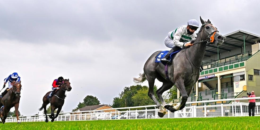 Alpinista horse racing news