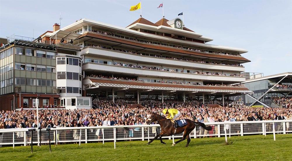 Newbury racing news
