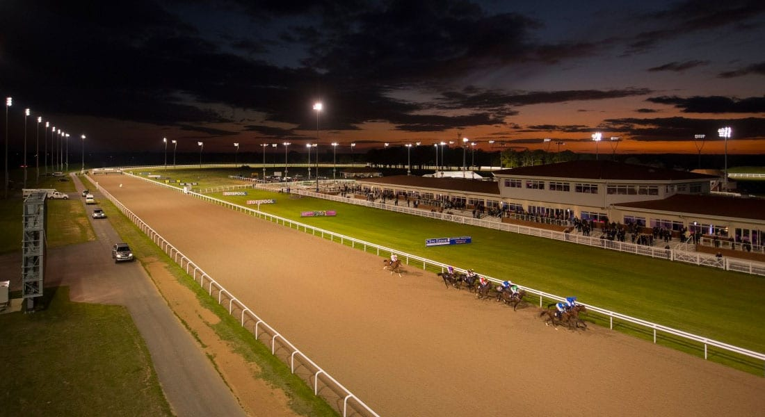 Chelmsford horse racing news